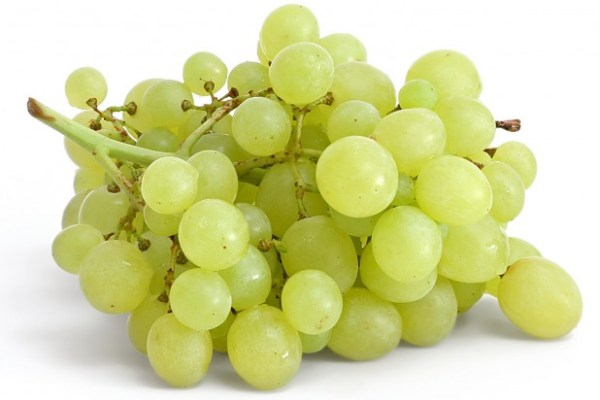 grapes_on_white-618x464