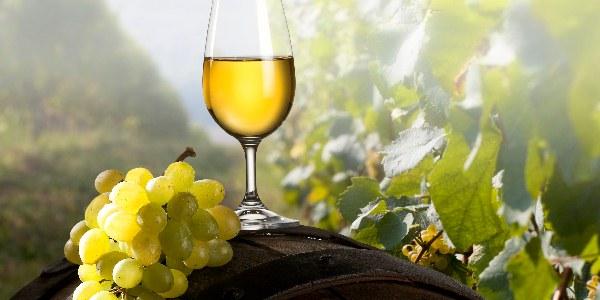 Картинки по запросу шампанское виноград
