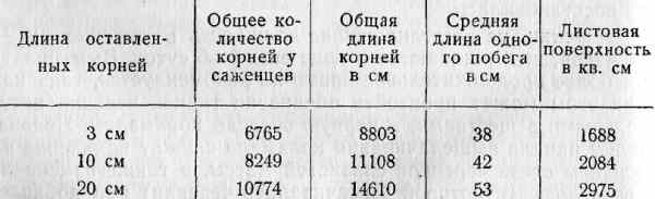 031-tab5