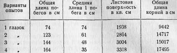 031-tab6