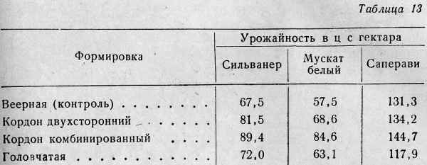 032-tab13