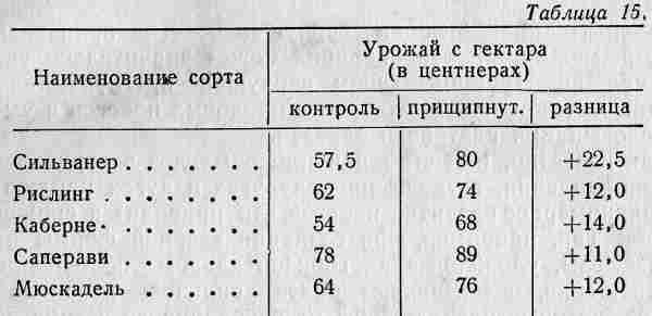032-tab15