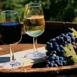 Крымских виноделов испугали российские законы