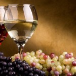 Развитие виноградарской и винодельческой отрасли в Крыму
