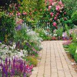Цветы — основа ландшафтного дизайна участка